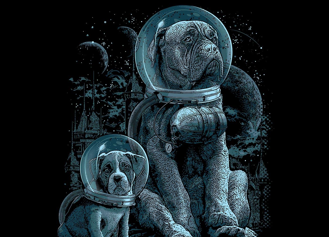 blog_top-search-term_design_uk_google_dog