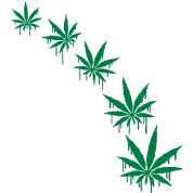 Weed Graffiti Style By Style O Mat Spreadshirt